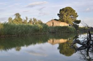 Cabanes de Lansargues 5 fb